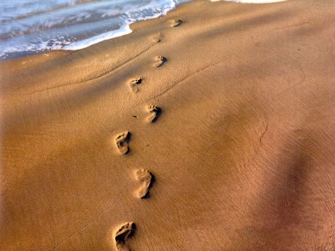 Footsteps Of The Thoughts