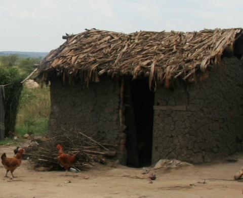 Poor Man's Hut